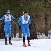 Чемпионат Марий Эл по лыжным гонкам