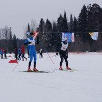 Команда РМТ по лыжным гонкам в 24-й раз подряд выиграла общий зачет чемпионата Марий Эл_2