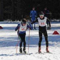 Чемпионат Республики Марий Эл по лыжным гонкам 2015